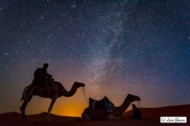 Arabic Nights