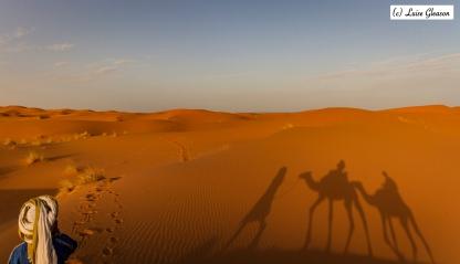Journey Through The Sahara