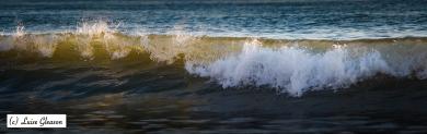 Wave No. 1