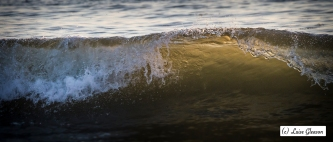 Wave No. 3